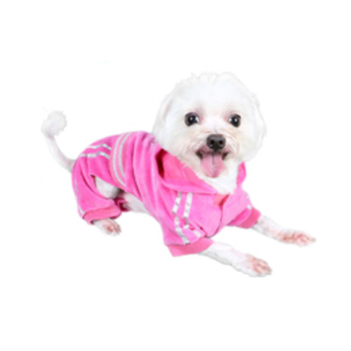 Pooch Outifitter