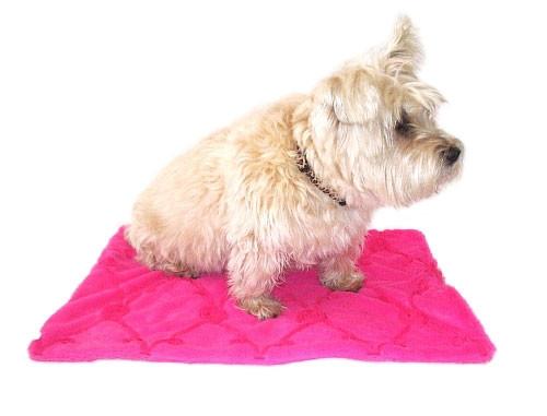 Hot Pink Roses Minkie Binkie Blanket