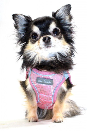 EZ Reflective Royal Elegance Harness Vest - Pink