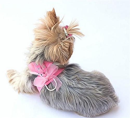 Pink Parisian Corset Harness