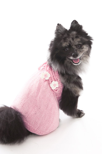 The Daisy - Pink Hand Knit Dog Sweater Dress