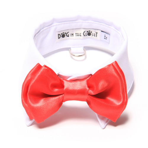 White Shirt Dog Collar with Red Bow Tie