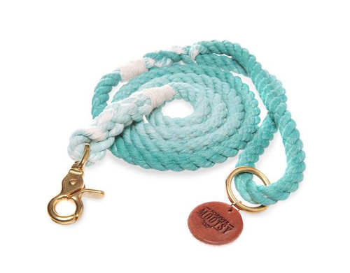 Teal Ombré Dog Leash