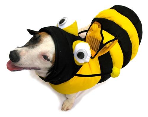 Bee 3-D Costume