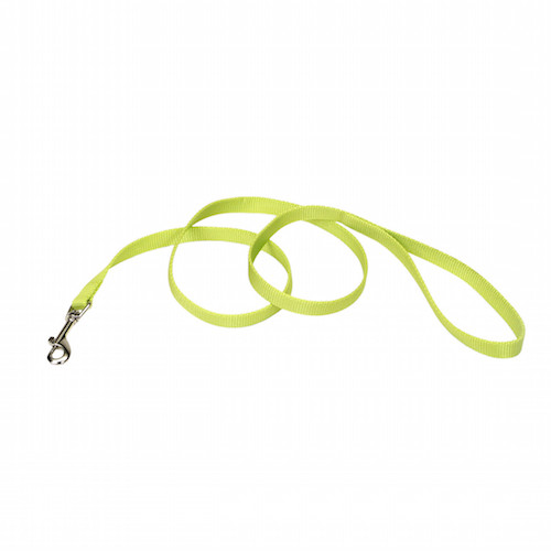 Coastal Pet Nylon Leash - Lime