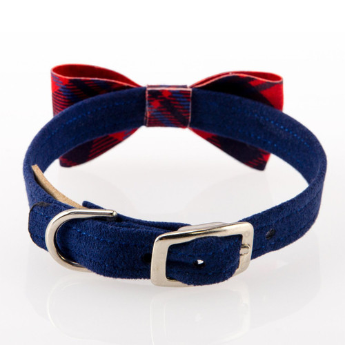 Scotty Furberry Blue and Red Plaid Bow Tie Dog Collar 2