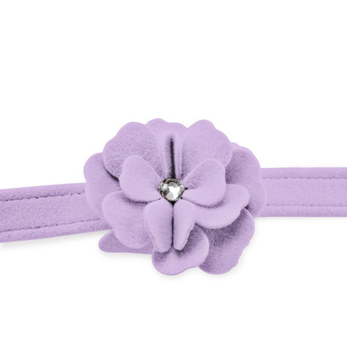 Garden Flower Violet Leash 2
