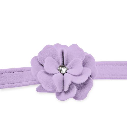 Garden Flower Violet Leash 2