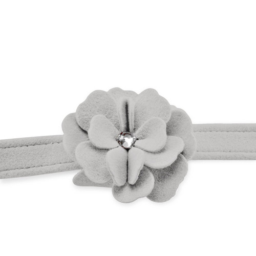 Garden Flower Silver Leash 2