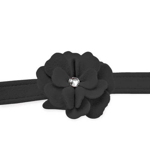 Garden Flower Black Leash 2