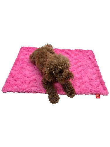Blanket, Bella Hot Pink Small