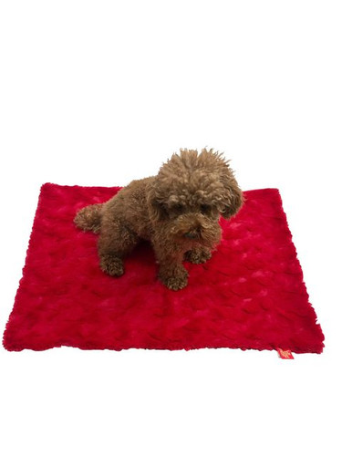 Blanket, Bella Red Small