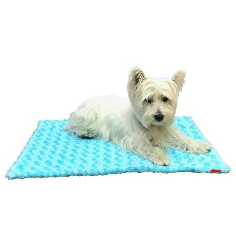 Small Blanket, Aqua Rosebud