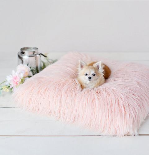 Himalayan Yak Dog Mat: Peach