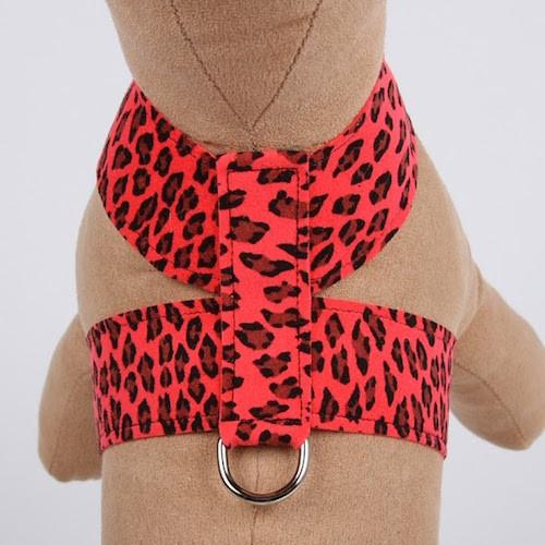 Plain Tinkie Harness Mango Cheetah Couture