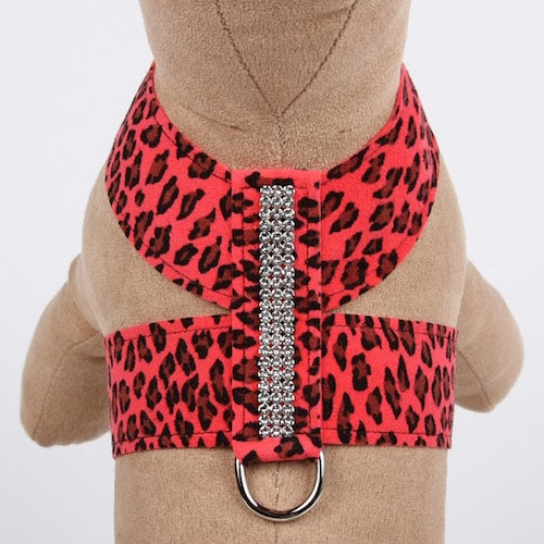 Mango Cheetah Couture 3 Row Giltmore Tinkie Harness