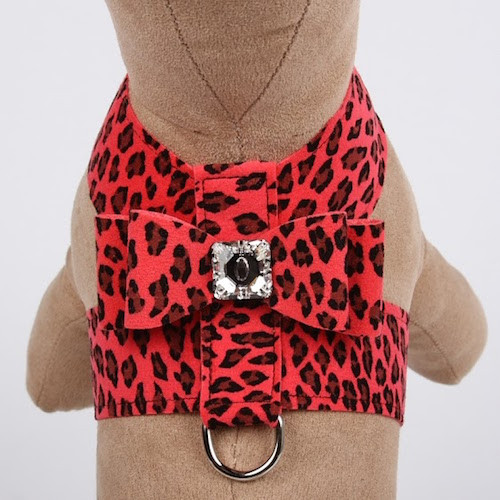 Big Bow Tinkie Harness Mango Cheetah Couture