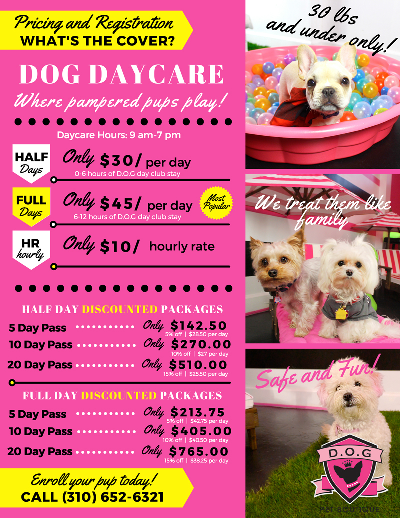 dog-daycare-beverly-hills-west-hollywood-pricing-best.jpg
