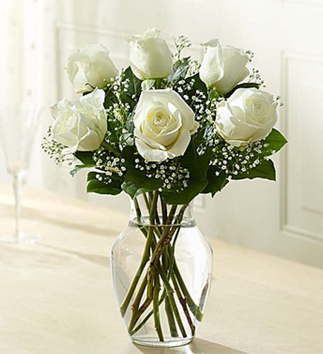 6 Stems White Love's Embrace Roses