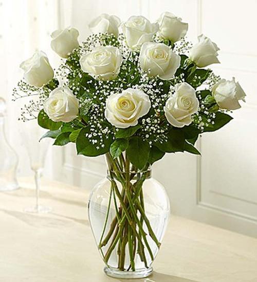 1 Dozen Roses White Rose Elegance Premium