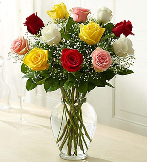 1 Dozen Roses Assorted Rose Elegance Premium