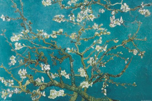 Almond Blossoms Decorative Poster 36x24