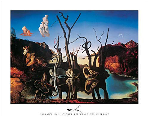 Cignes Reflectant Des Elephants by Salvador Dali Art Print Poster (28x22)
