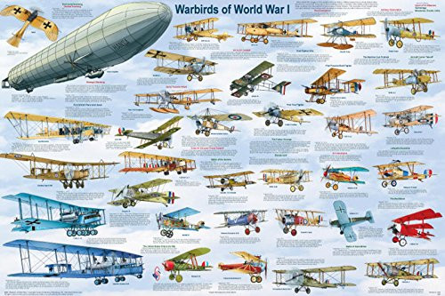 Warbirds of World War I Educational Military Airplanes Chart Print Poster 24x36
