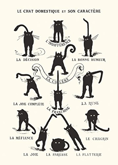 Vintage - Le Chat Domestique - Art Print/Poster 11x14 inches