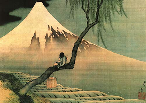 Boy Viewing Mount Fuji by Hokusai Art Print Poster (20x16)