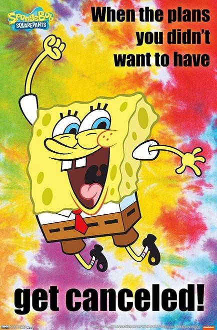 "Spongebob Meme Poster - 22.375""' x 34""' Image"