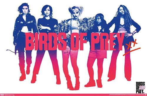 "Harley Quinn Birds of Prey Poster - 22.375""' x 34""' Image"