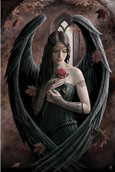 """Anne Stokes - Angel Rose Poster 24"""" x 36"""" Image"""