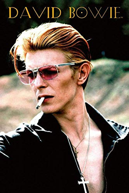 David Bowie - Rebel Poster 24 x 36in