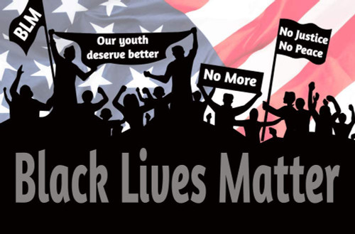 Black Lives Matter Crowd Signs Mini Poster 11x17 inches