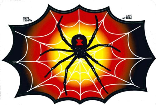 """Spider In Web - 3"""" X 5"""" - Sticker"""