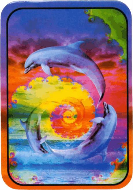 "Dolphins - Sticker - 2 1/2"" X 3 3/4"""
