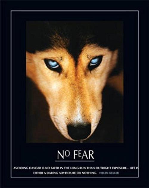 No Fear Hellen Keller Quote Dog Art Print Poster Mini Poster 16 x 20in