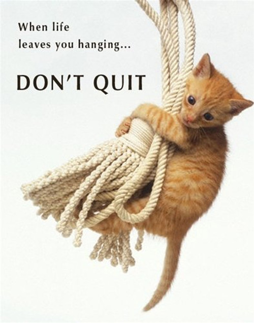 Don't Quit Cute Cat Kitten Animal Motivational Poster 16 x 20 inches