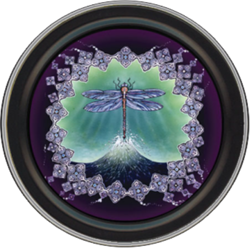 """Stash Tins - Dragonfly 3.5"""" Round Storage Container - Mike Dubois"""
