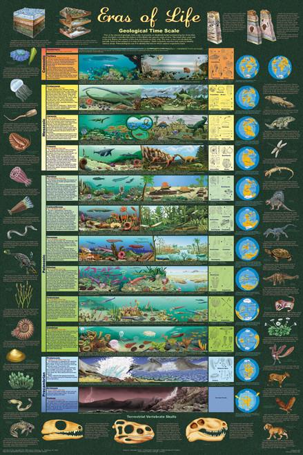 Eras of Life Educational Poster 24x36