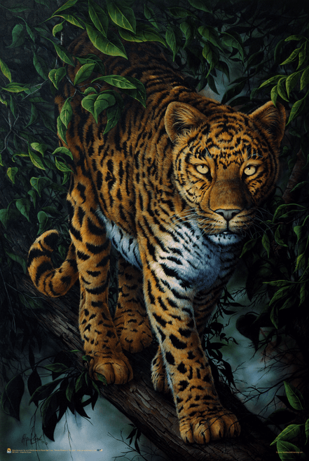 "Watchful Eyes by Jenny Newland Poster - 24"" x 36"""