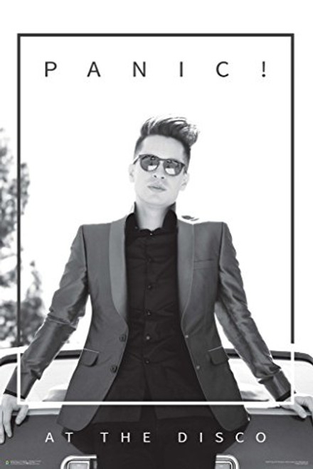 Panic! At The Disco Leaning Music Poster 24x36 Image
