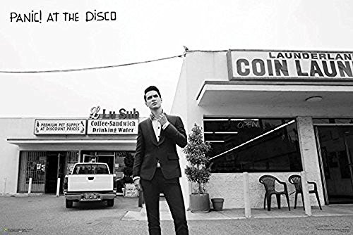Panic at The Disco - Laundromat [Brendon Urie] 36x24 Music Art Print Poster Image
