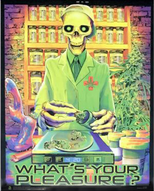 What's Your Pleasure Non-Flocked Mini Black Light Poster 16 x 20 Image