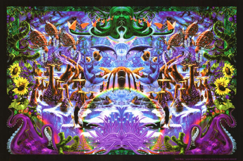 "Octopus Garden Non-Flocked Blacklight Poster 36"" x 24"" Image"