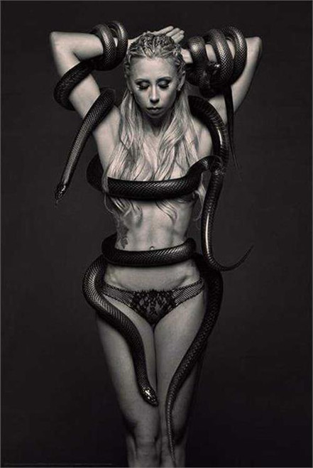 Medusa Poster by: Daveed Benito 24-by-36 Inches Image