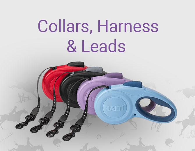 Dog Collars, Harness and Leads