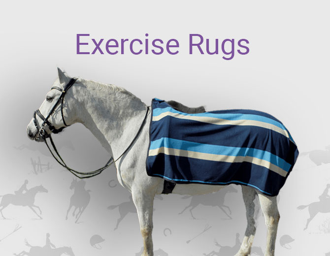 Exercise Rugs