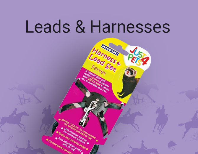 Leads and Harnesses